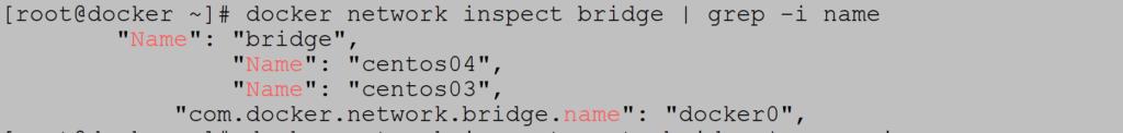 Docker custom bridge network