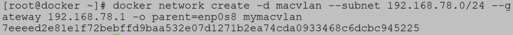 Docker MACVLAN